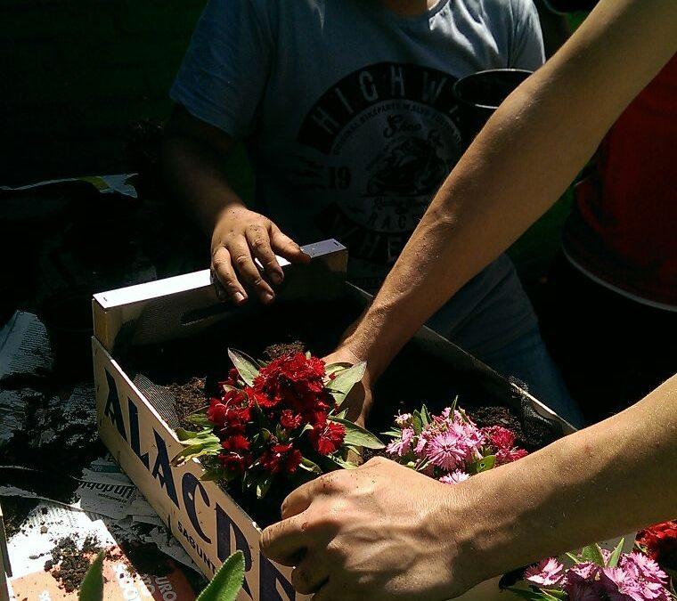 Aprenentatge i Servei: decoració en jardineres en motiu de la festa de primavera.