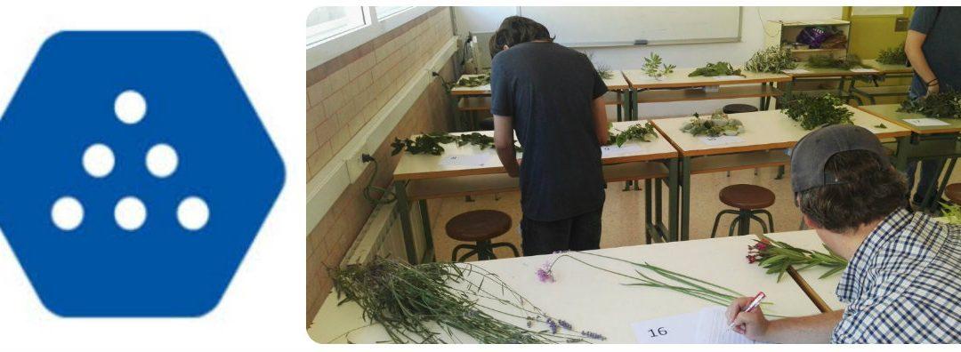 [QUALIFICA'T] Per quart any consecutiu l'INS Les Salines avalúa coneixements adquirits l'activitat prelaboral de jardineria!