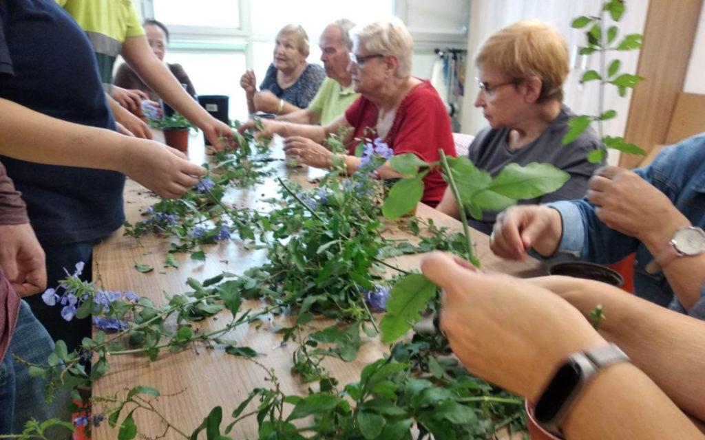 Reproducció de plantes a Sant Genís