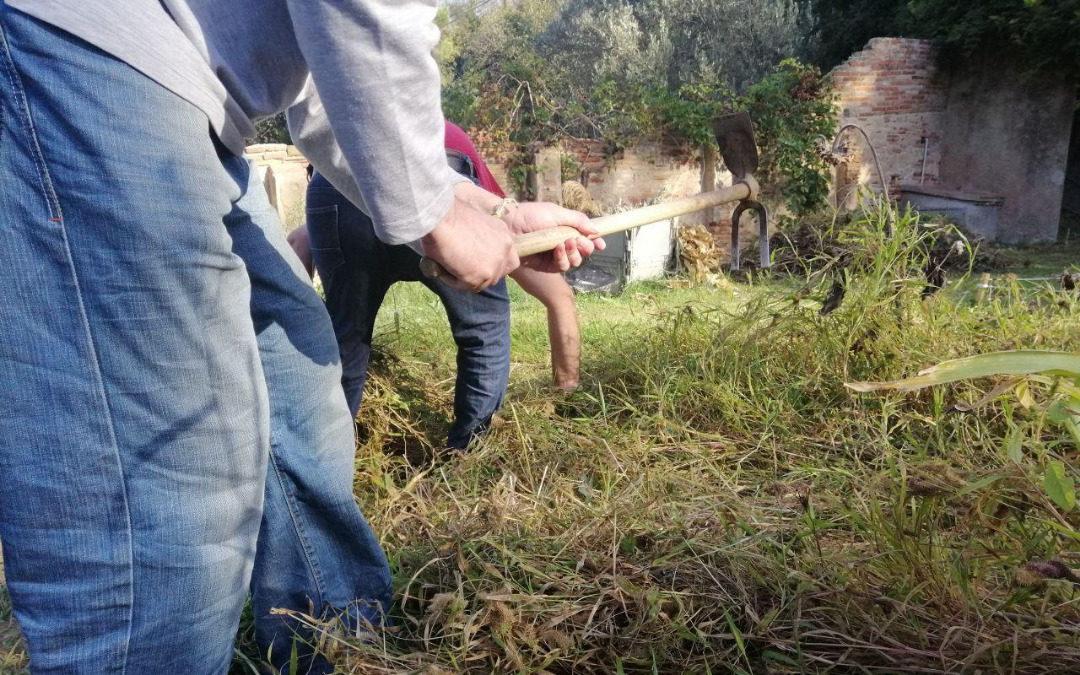 El Club Social Pol+ trabaja en un huerto en Can Soler
