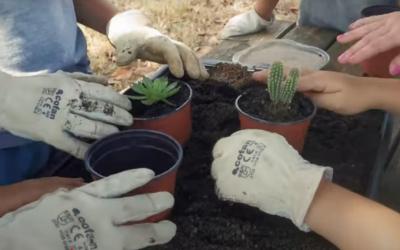 La #CactusExperience ja té format presencial